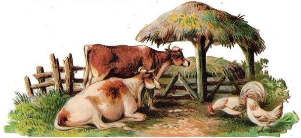Glanzbilder - Victorian Die Cut - Victorian Scrap - Tube Victorienne - Glansbilleder - Plaatjes : Tiere auf dem Bauernhof
