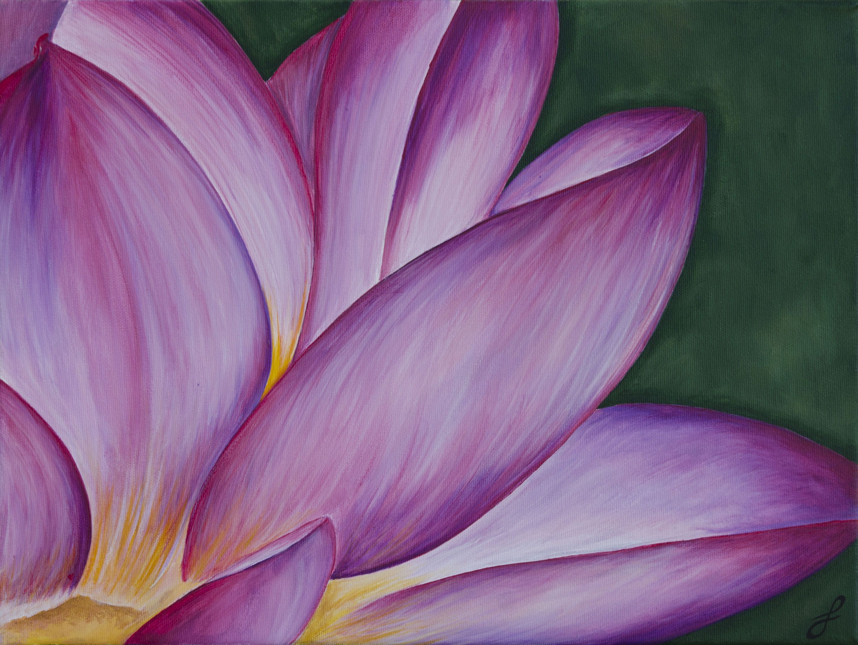 lotus flower acrylic painting