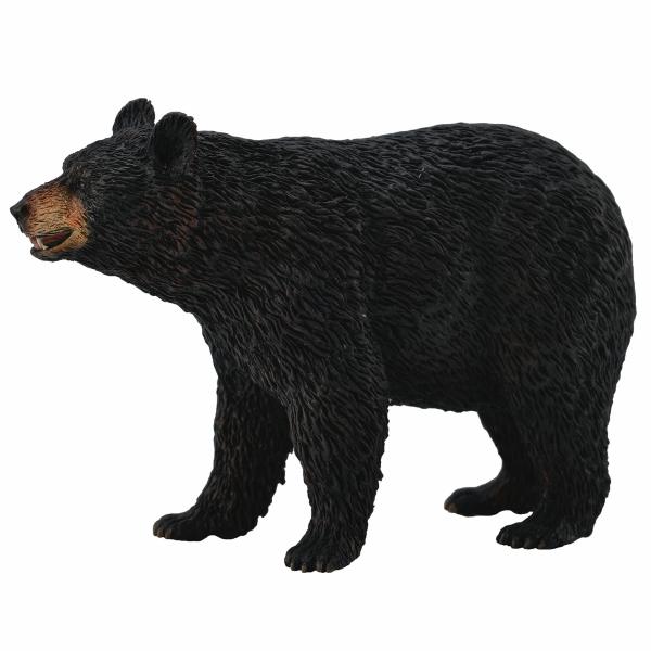 Murdoch S Breyer American Black Bear American Black Bear Black Bear Bear Species