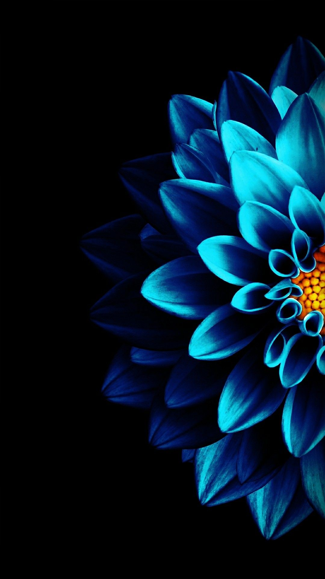 Half Blue Isartfulfairytale Black Background Wallpaper Blue