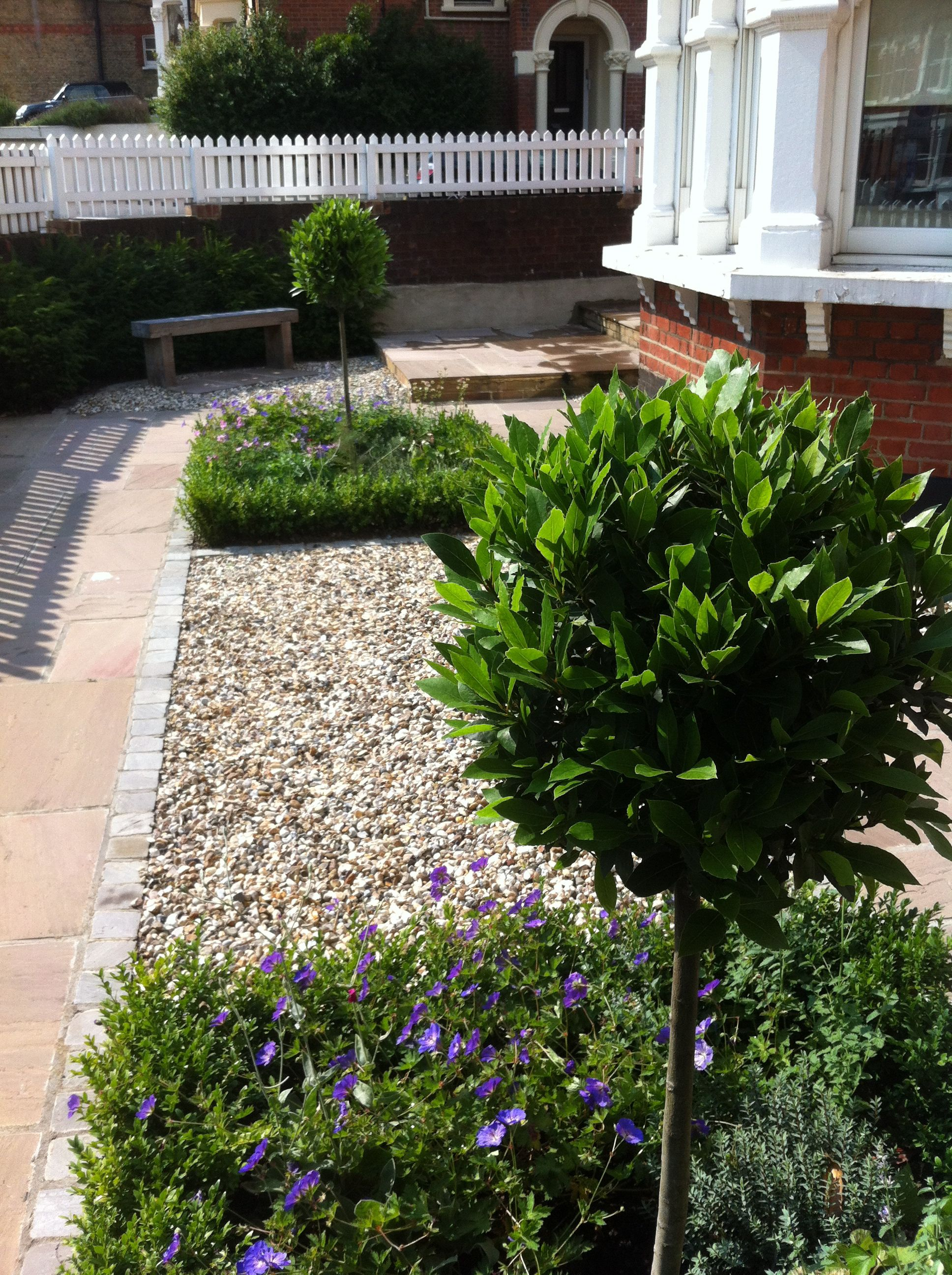 Wimbledon low maintenance front garden our forever home for Low maintenance sloping garden ideas