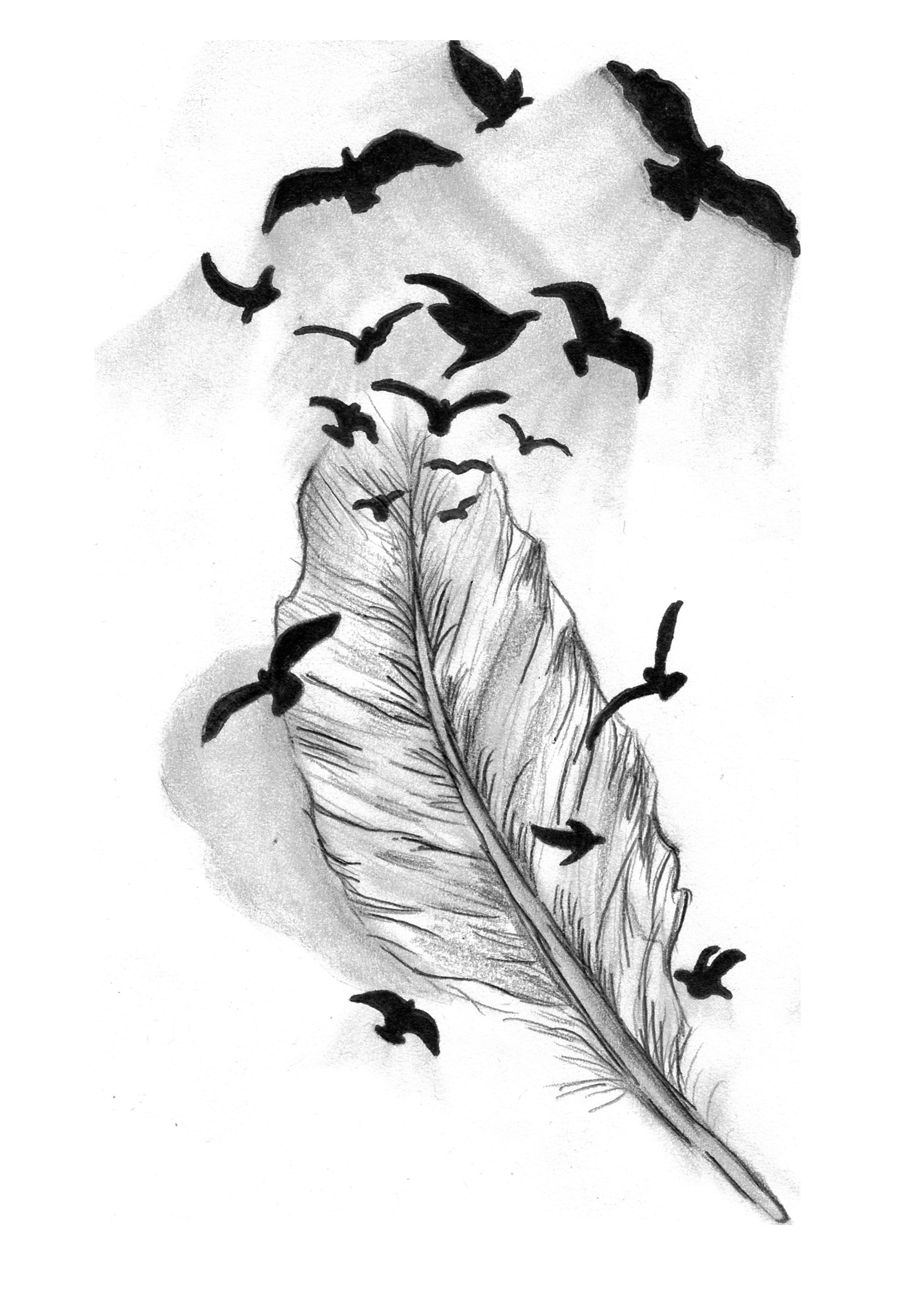 Картинки перышко с птицами