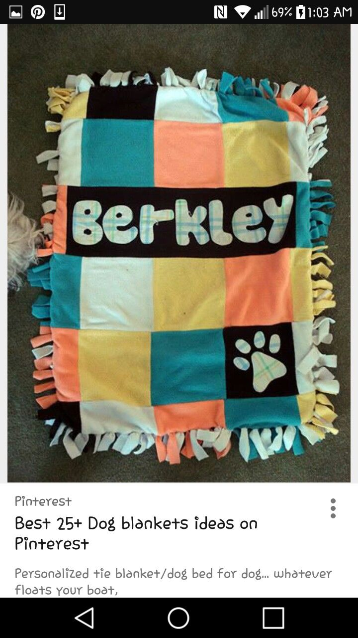 Pin By Breezy Marie On Quilts Homemade Tie Blankets Diy Dog