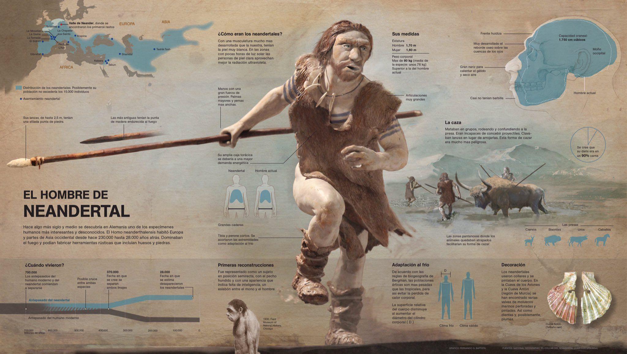 El hombre de Neandertal.
