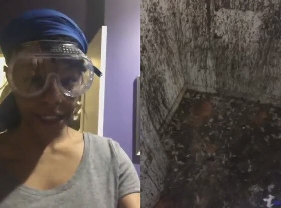 Meanwhile, Rapper Azealia Banks Posted a Video of Cleaning the Closet She Ritualistically Sacrifices Chickens in on Instagram - https://therealstrategy.com/meanwhile-rapper-azealia-banks-posted-a-video-of-cleaning-the-closet-she-ritualistically-sacrifices-chickens-in-on-instagram/