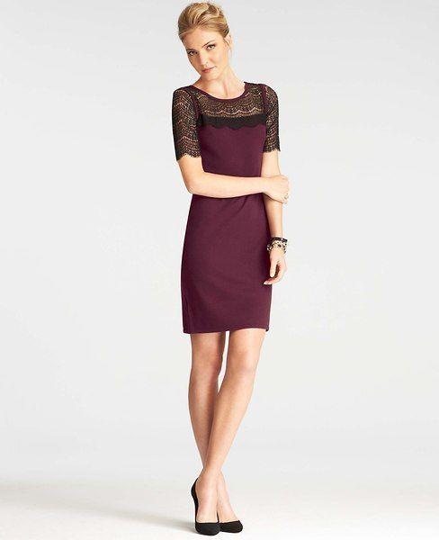 Petite Lace Overlay Short Sleeve Sweater Dress   Sweater