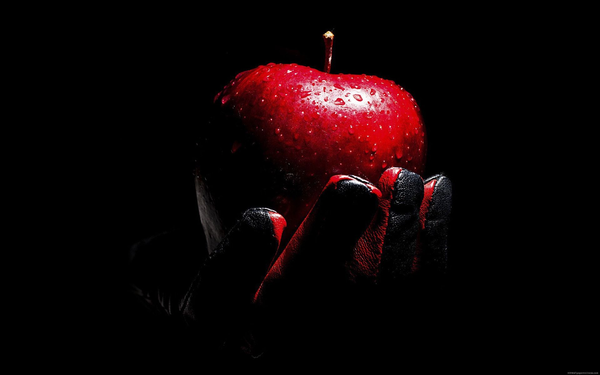 Red Apple black leather glove HD Wallpaper - http://www ...