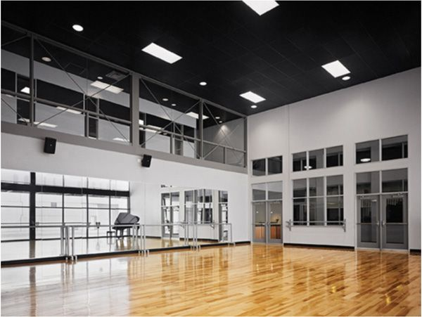 Harlequin Woodspring With Hardwood Ballet Austin Studios Home Dance Studio Dance Studio Design Dance Studio