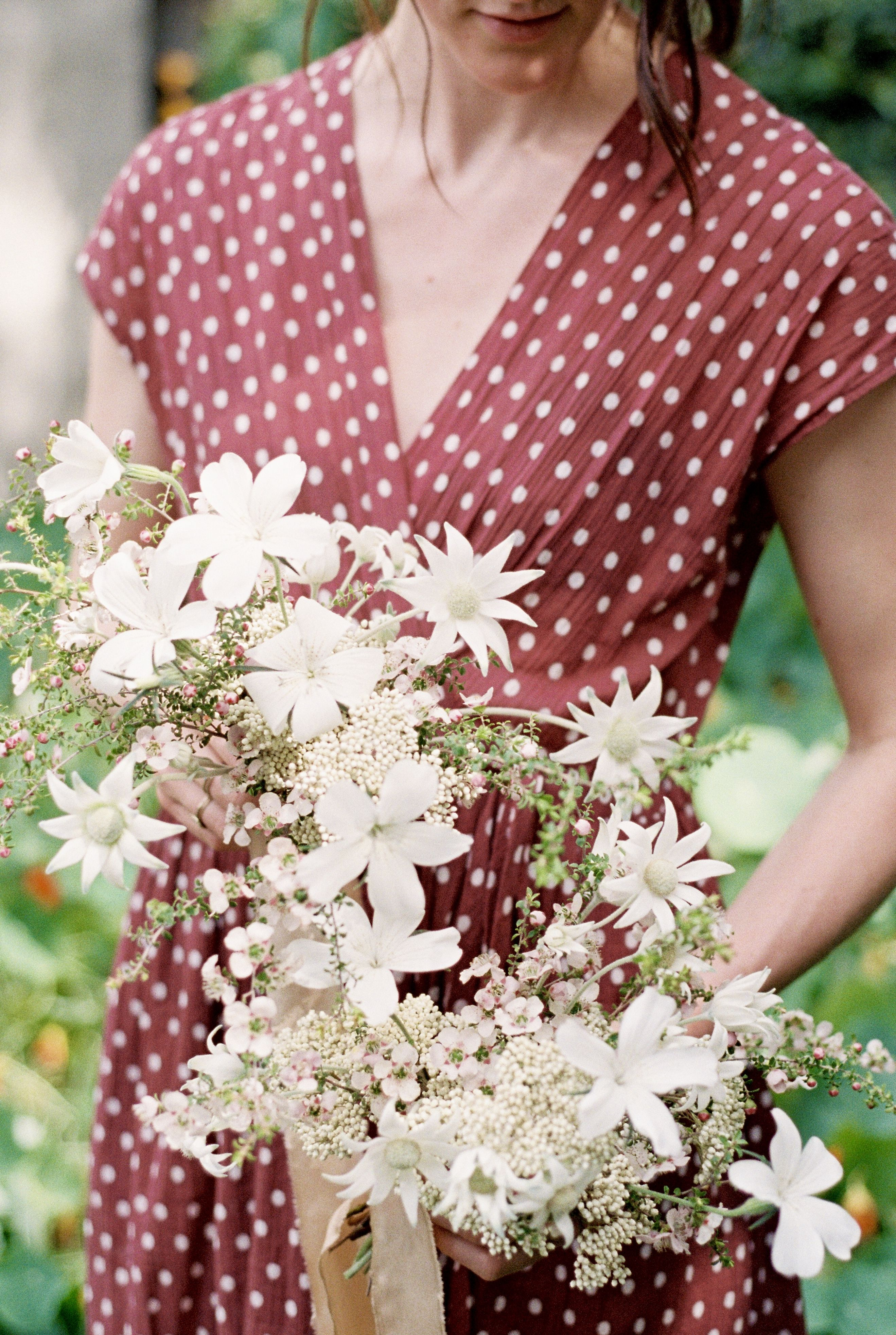 Wildflowers and Australian natives, flannel flowers
