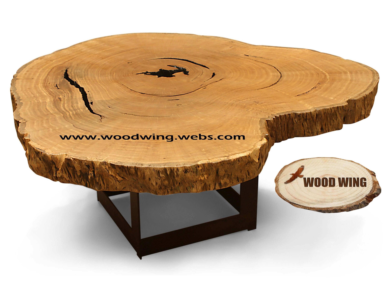 Natural Tree Log Slices Big Large Tree Trunk Trader Supplier In Mumbai Wood Wing Wood Tree Logs Organic Wood