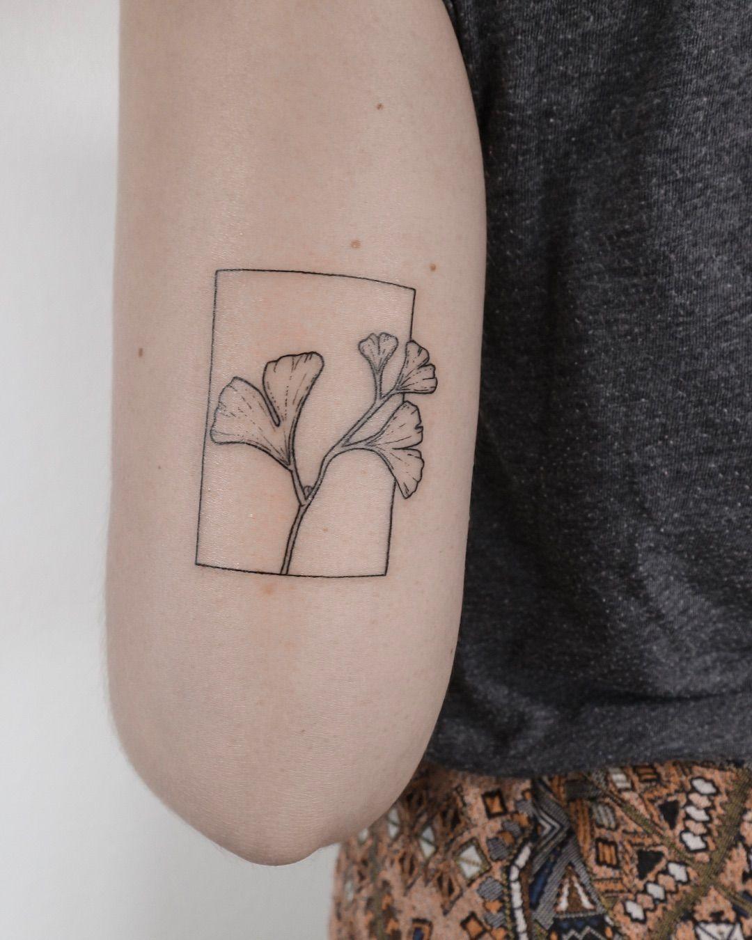 Ann Gilberg Handpoke Tattoos On Instagram Ginkgo In A Frame
