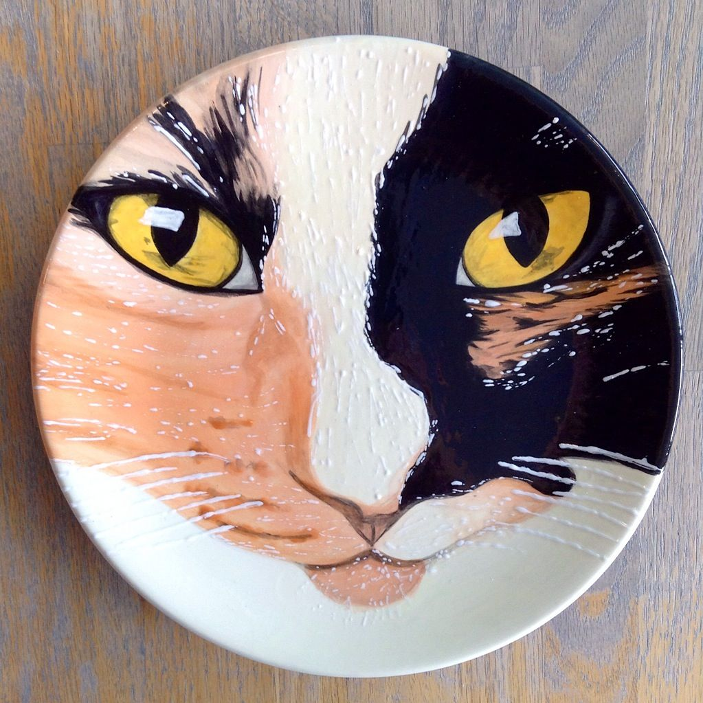 Cat Portrait Plate Paint Your Own Pottery Paint Your Pot Cary North Carolina Pottery Painting Pottery Painting Designs Paint Your Own Pottery