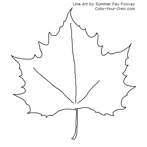 Maple Leaf Coloring Page  coloring sheets  Pinterest  Coloring