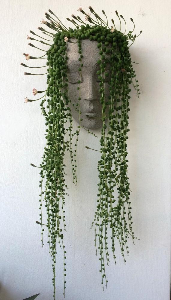 Photo of Vertical planter, planter, headplanters, concrete planter, wall planter, wall pot for plants, wall art, face planter, head planter, head pot