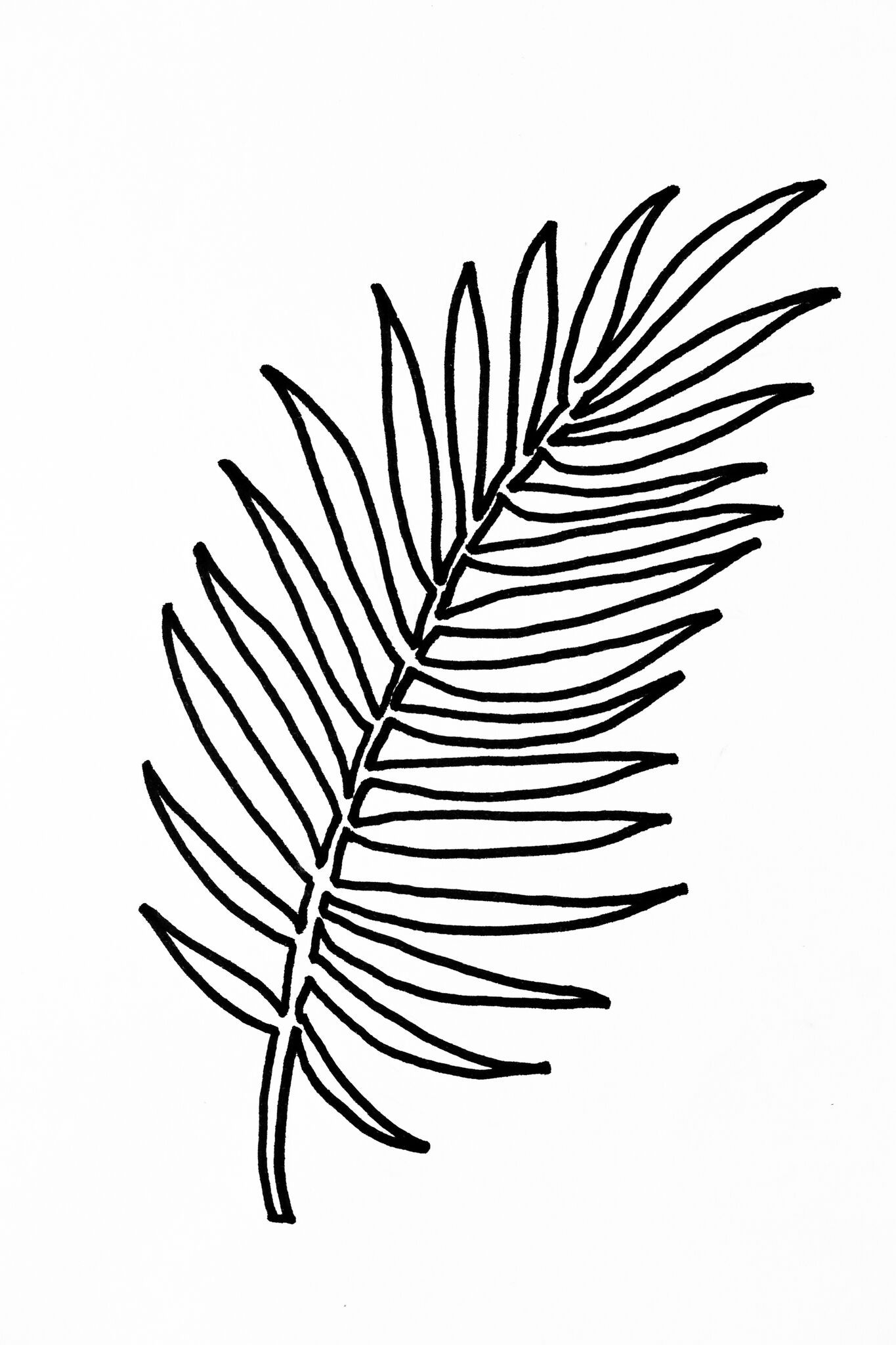 Compartilhado Com O Dropbox Leaf Template Leaf Stencil Leaf Template Printable Easy enough, i thought, plus i needed a little inspiration for new content ideas after our long three day labor day weekend, anyway! pinterest