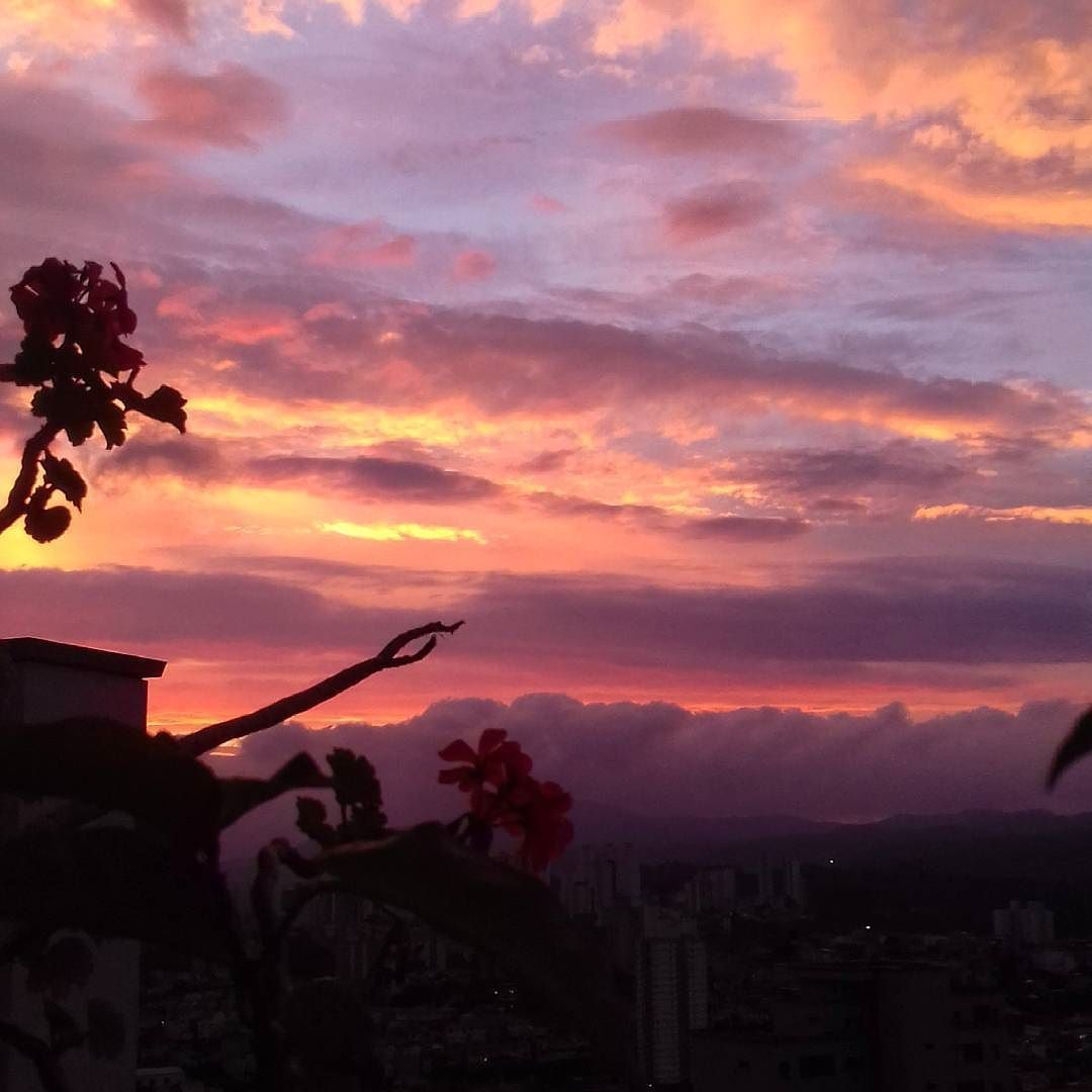 Sky colors. #sky #colors #sunset #saopaulo #ceu #pordosol #nature #natureza #beauty #natureart #artenatural by estamparara
