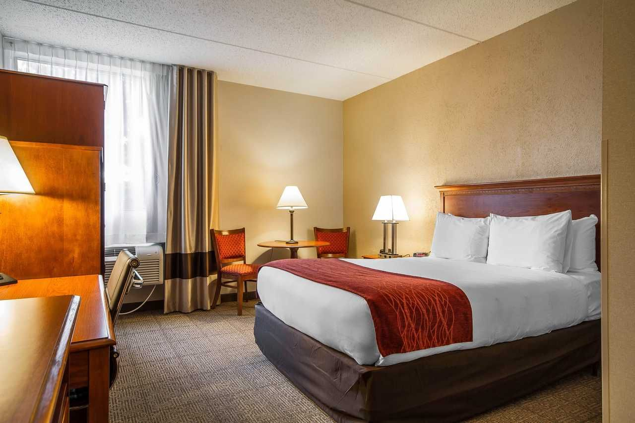 Guest Room With One Queen Bed Comfort Inn Madison Wi Hotels Room Bed Inn