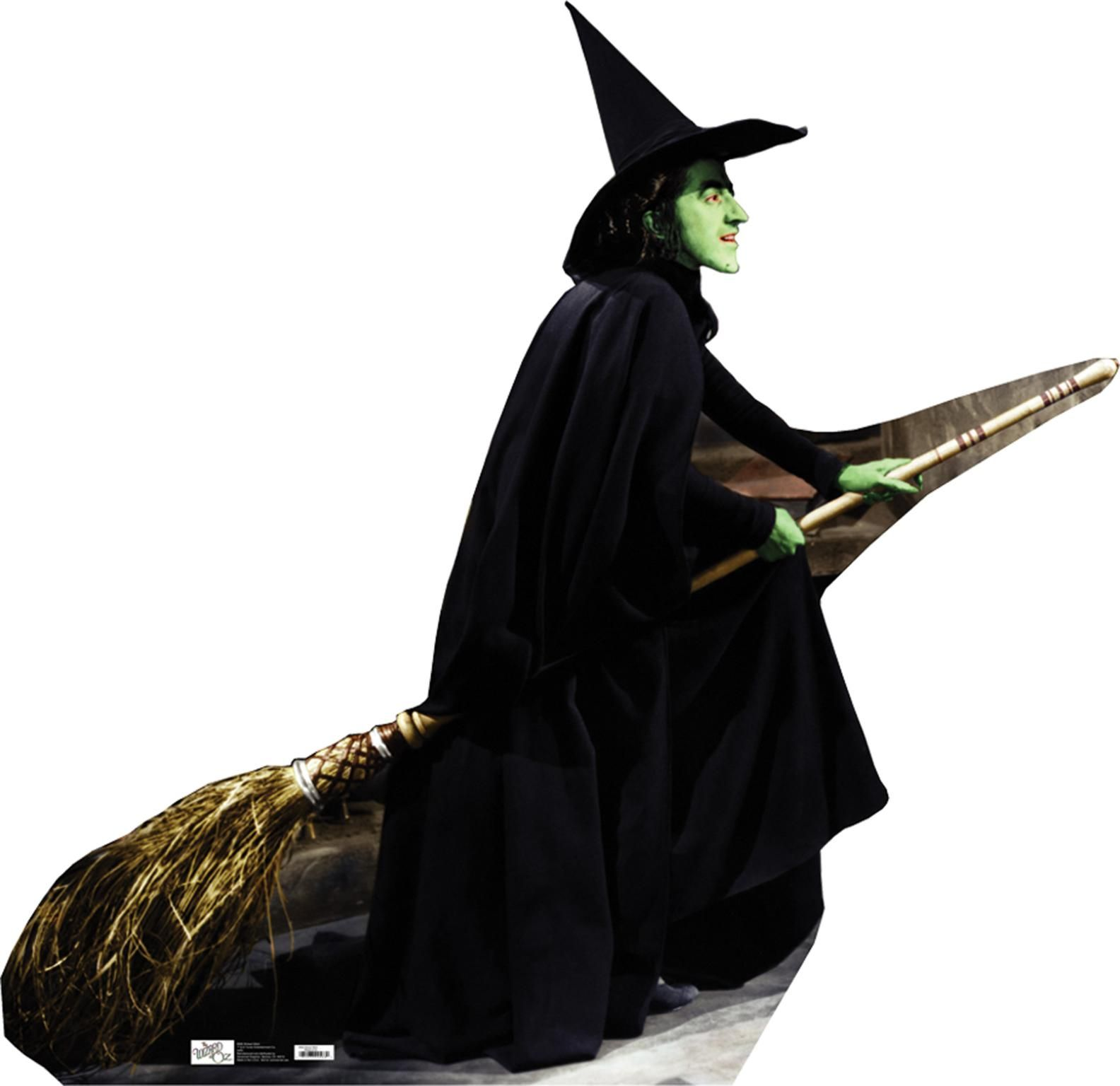 wizard of oz witch | The Wicked Witch - From Wizard of Oz - 568 ...