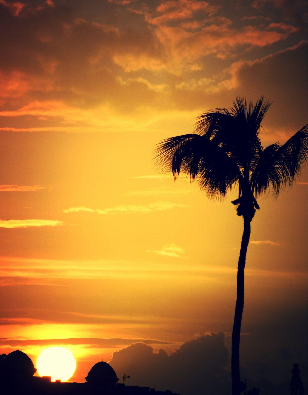 Sunset print - Sunset decor - Palm Tree print - Cloud print - Wall ...