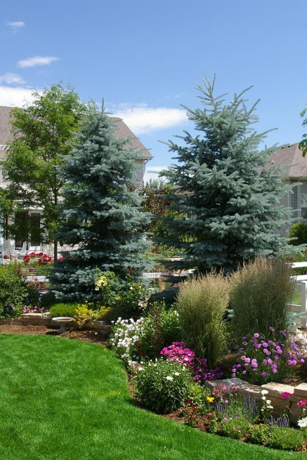 Pin On Landscape And Garden Ideas