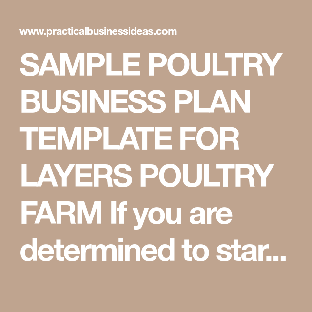 Sample Poultry Business Plan Template For Layers Poultry Farm If You Are Determined To Start Your Own Chicken Fa Poultry Farm Farming Business Poultry Business