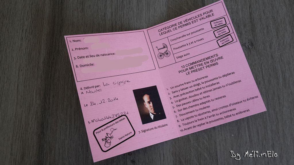 PERMIS POUSSETTE /à personnaliser boite /à papa futur papa future grande soeur futur grand fr/ère