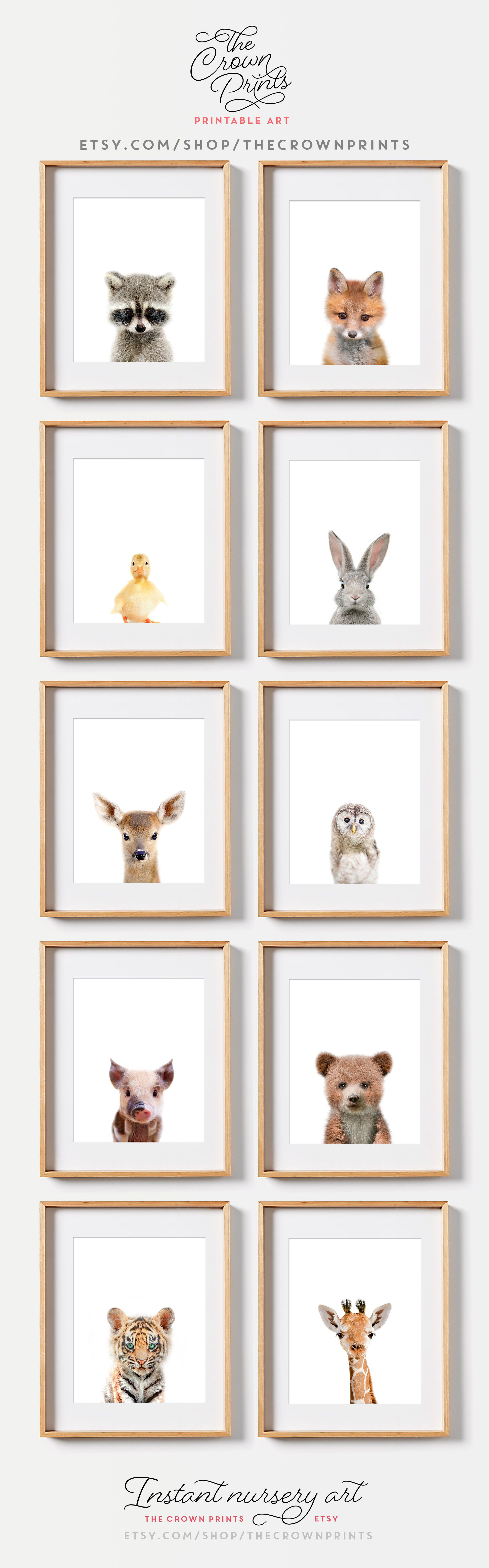 Woodland Animals Safari Nursery Art From The Crown Prints On Etsy Available As