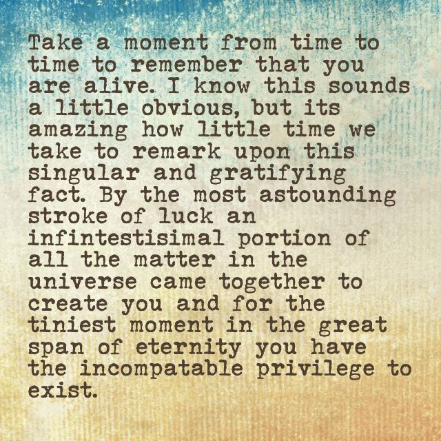Take a moment from time to time to remember that you are alive. I know this sounds a trifle obvious, but it is amazing how little time we take to remark upon this singular and gratifying fact. By the most astounding stroke of luck an infinitesimal portion of all the matter in the universe came together to create you and for the tiniest moment in the great span of eternity you have the incomparable privilege to exist. Bill Bryson