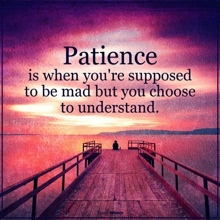 Patience Is When You Are Supposed To Be Mad Meaning In Hindi
