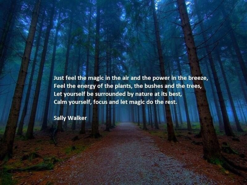 Earth Mother Nature Quote Quotes Natur