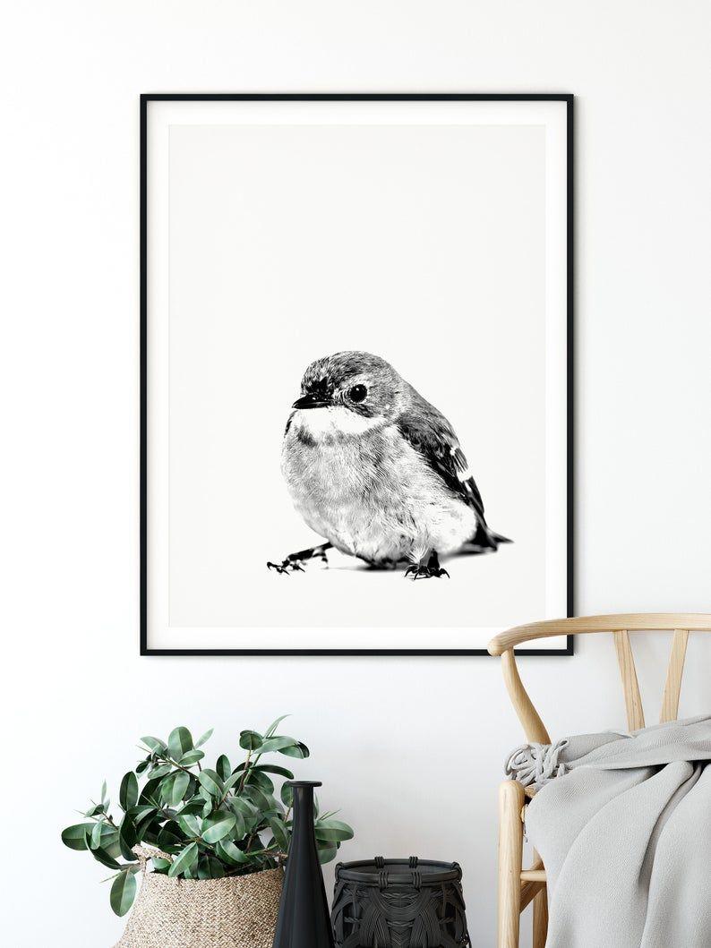 Photo of Black and White Bird Print, Bird Photography, Nursery Wall Art, Minimalist Print, Nordic Poster, Scandinavian Wall Art, Instant Download