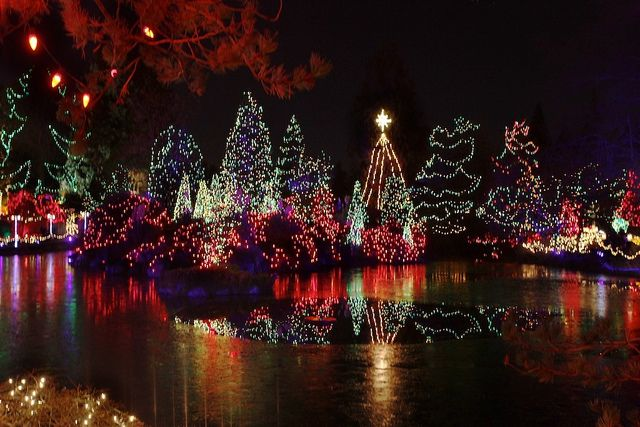 7c4ae8a4ca86d7636b70fed721c0b54e - Van Dusen Botanical Gardens Christmas Lights