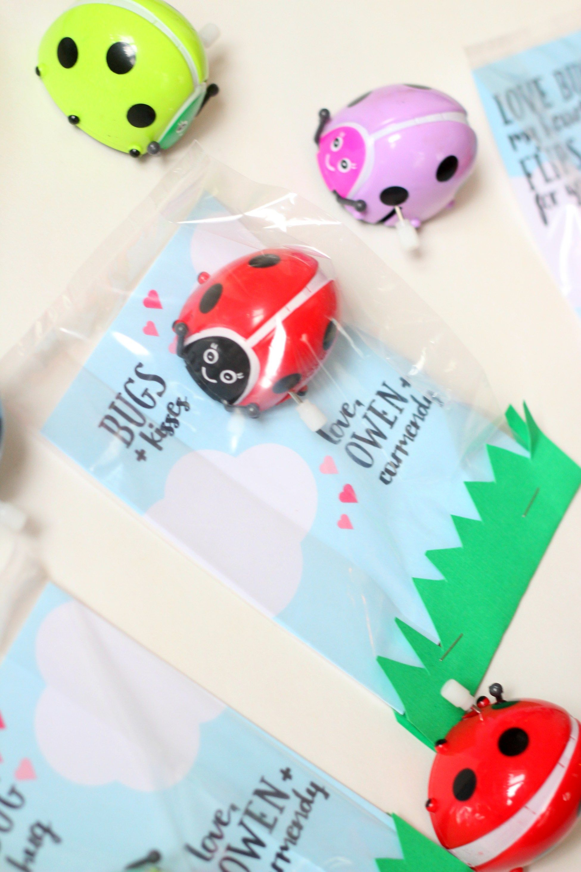 Love Bug Valentines with Free Printable Cards  Non-Candy valentine idea for lady bug valentines!