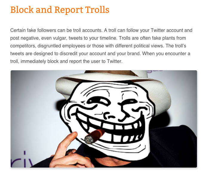 What are Twitter Trolls?