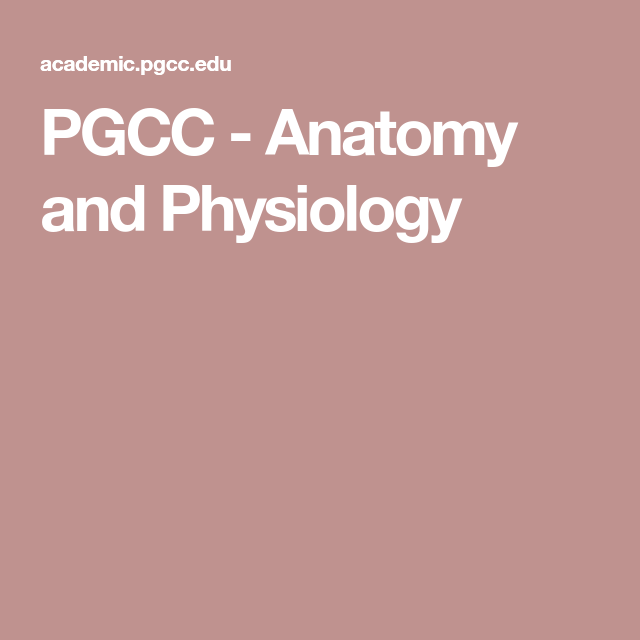PGCC - Anatomy and Physiology | Pharmacy, Nursing, and Health ...