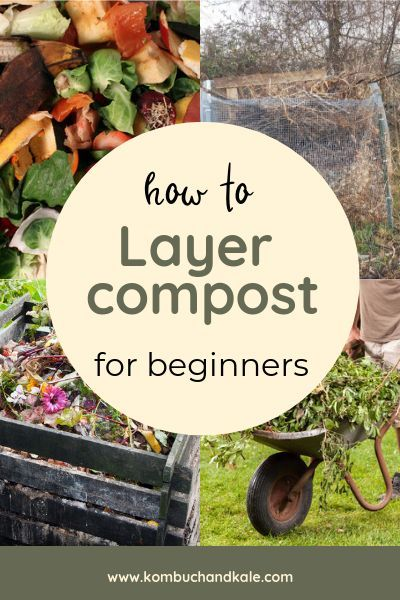Composting 101 How To Start A Compost Pile Garden Compost