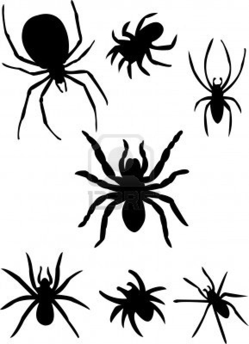kleurplaat spin peuters - Google zoeken | color page | Pinterest ...
