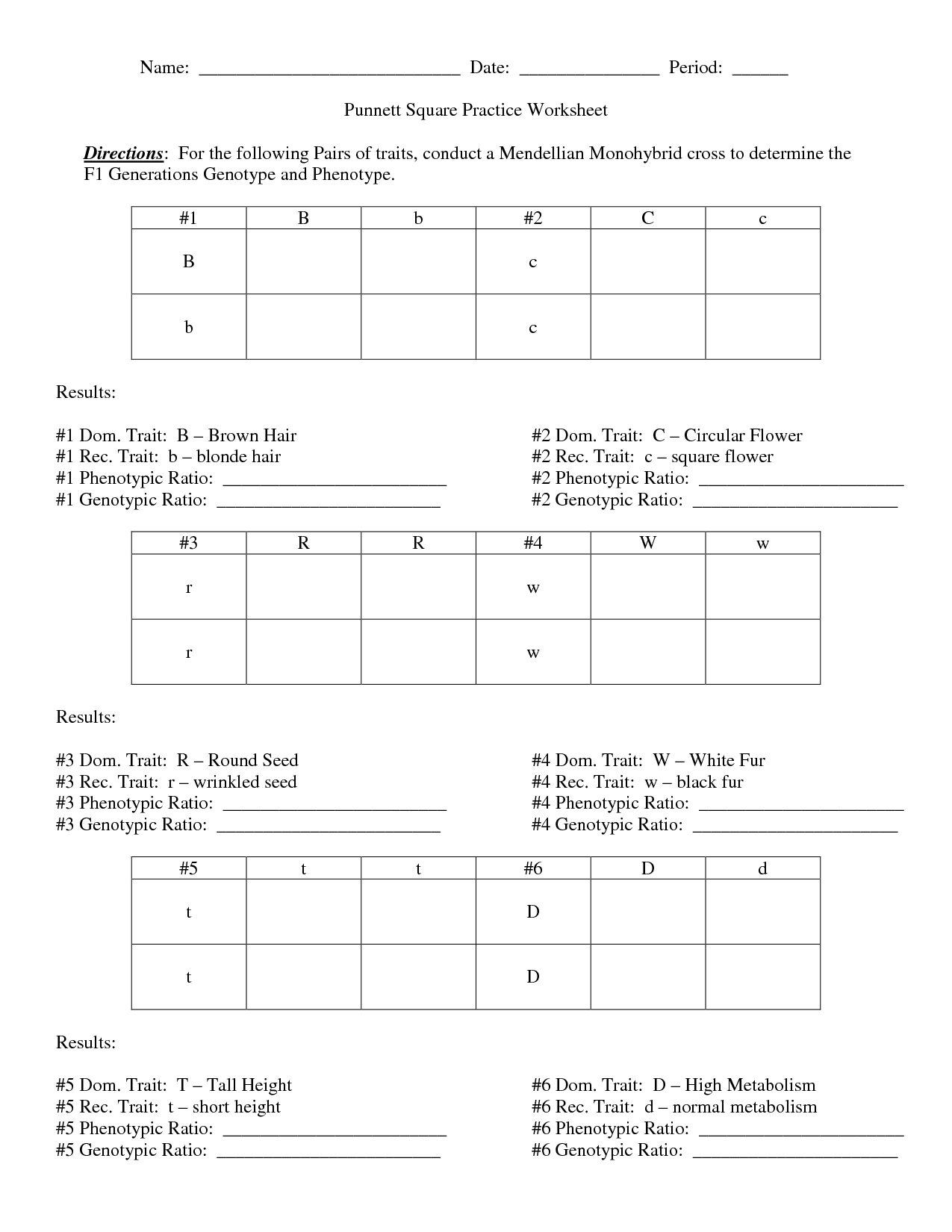 Worksheets About Punnett Squares Name Date Period