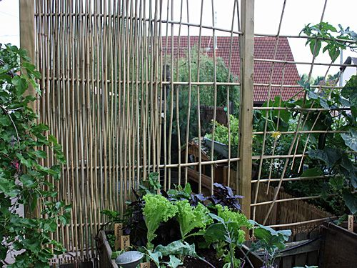 gestalten mit bambusst ben gartentipps garten bambus und garten ideen. Black Bedroom Furniture Sets. Home Design Ideas