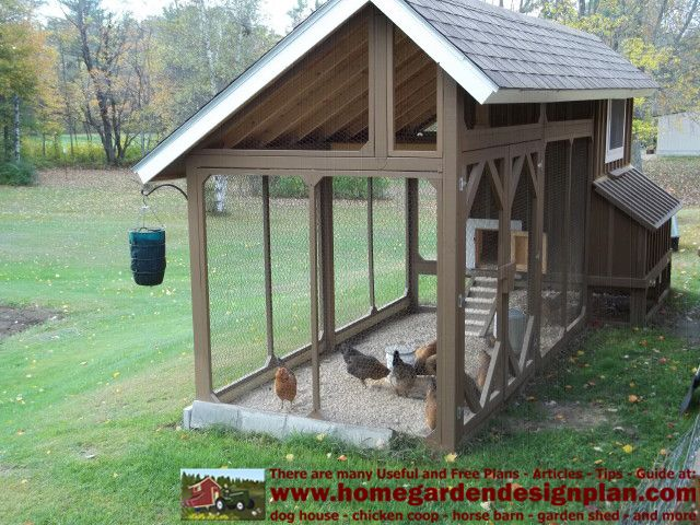 Layout of inside chicken co op chicken coop plans for Small chicken coop plans and designs ideas