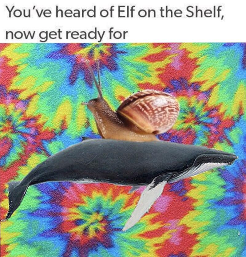 You've heard of Elf on the Shelf now get ready for Clean