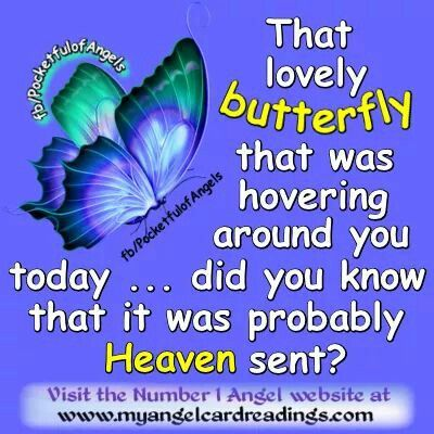 Butterfly Signs From Above Pinterest Quotes Angel Quotes And