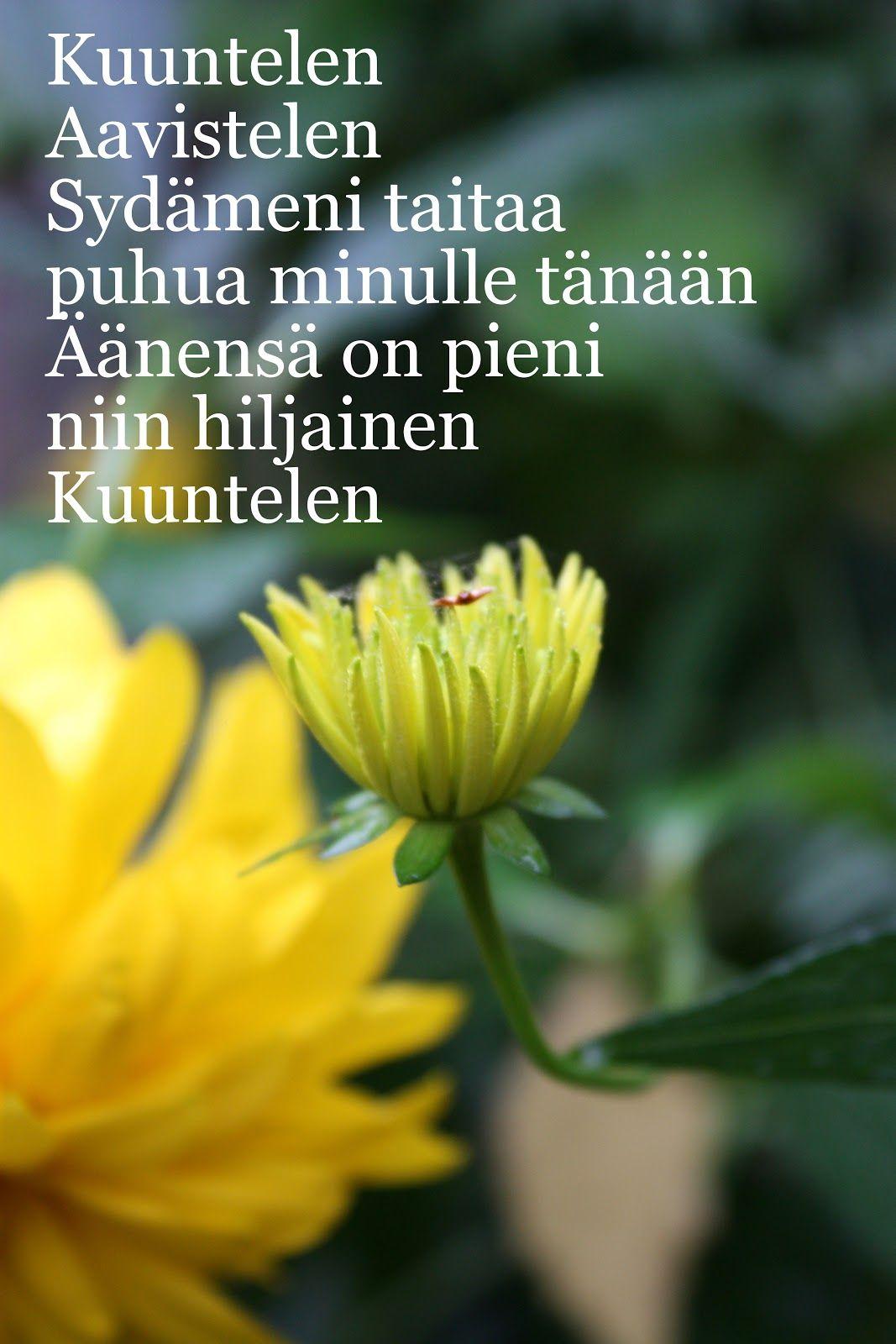 RunoTalo: Voimakortit viikolle 38: Rauhaa ja hiljaisuutta