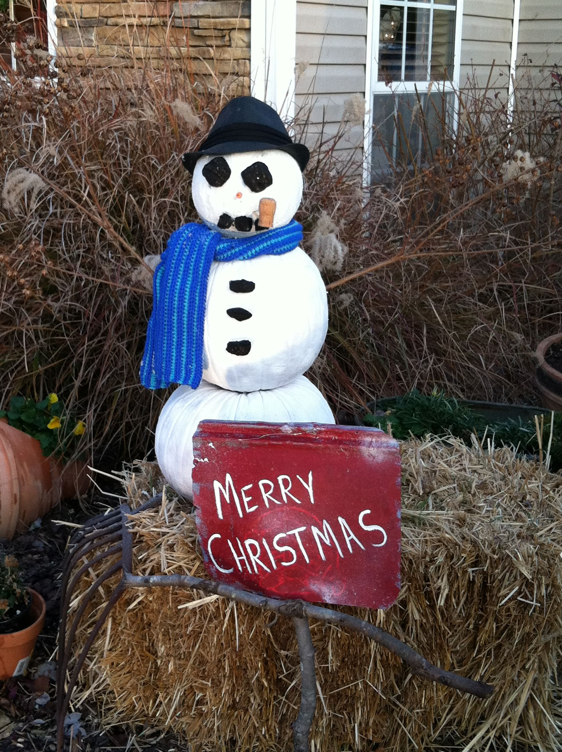 Repurposed pumpkins, crepe myrtle branches, charcoal & carrots.  Merry Christmas snowman