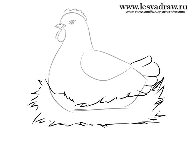 картинки как рисовать курицу