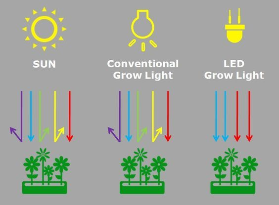 LED Grow Lights explained scientifically … | Good Ideas | Aquap…