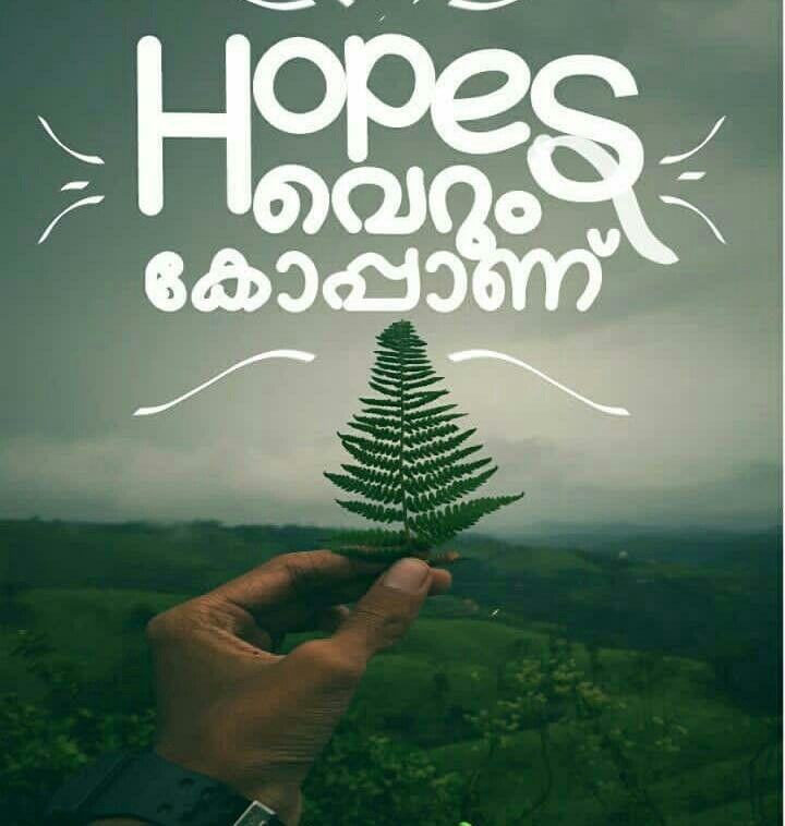 Yes No Hopes At Olll Malayalam Quotes Quotes Inspirational