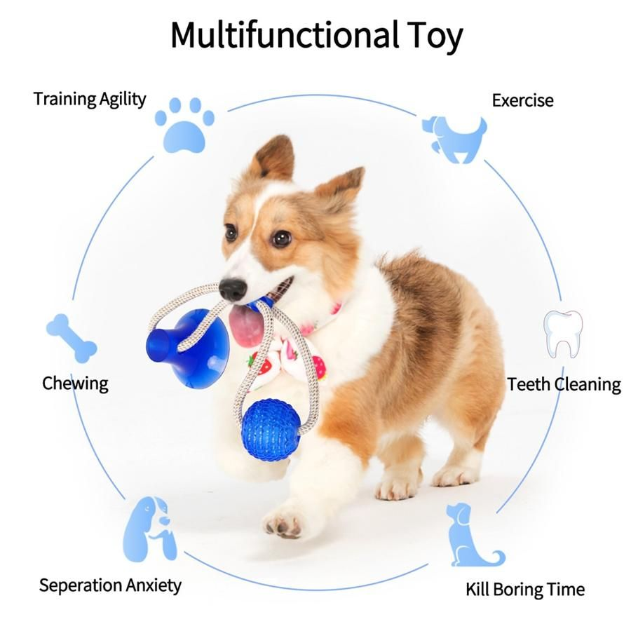Last Day Promotion Flexible Dog Molar Bite Toy Zvířata