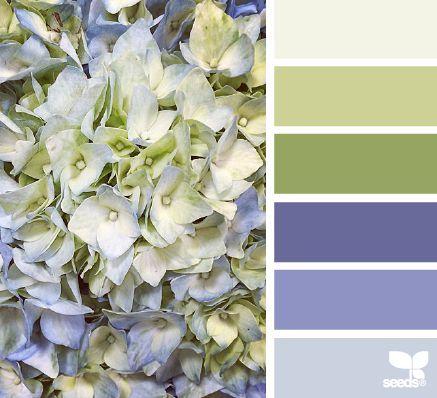 { hydrangea hues } | fresh hues | color + inspiration