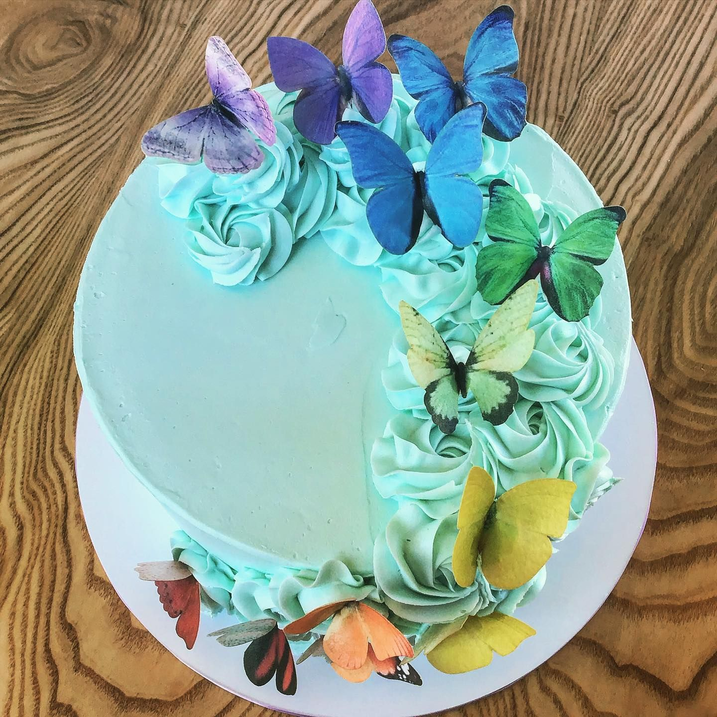 Butterfly Cake Butterfly Cakes Carnival Birthday Cakes Cake Decorating Ideas Unique
